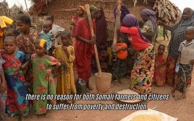 Documentary (East Africa 2015)